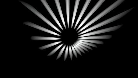 polar sun lights Animation