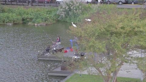 birds eye - Family fishing Dahu Park - birds sitti Footage