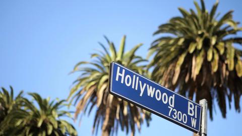 Hollywood Blvd Footage