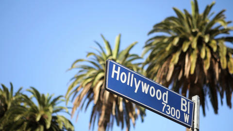 Hollywood Blvd Stock Video Footage