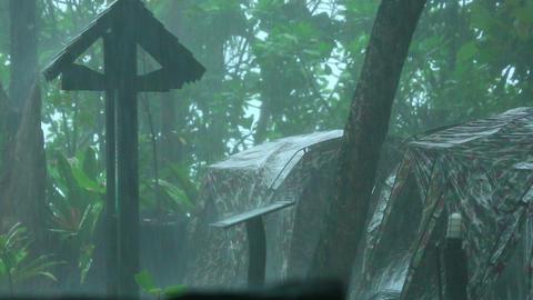 Tropical rain Footage