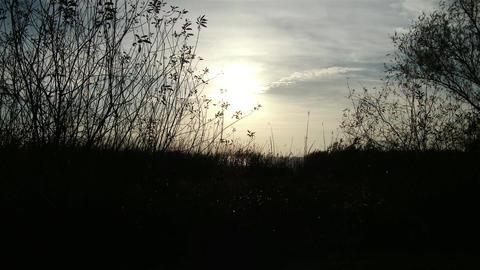 4K Autumn Lakeside Sunset 2 Footage