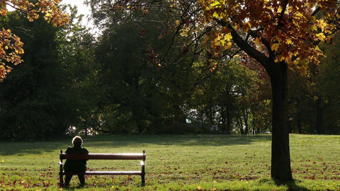 Elder Women Sitting On A Bench In Autumn Park 1 stock footage