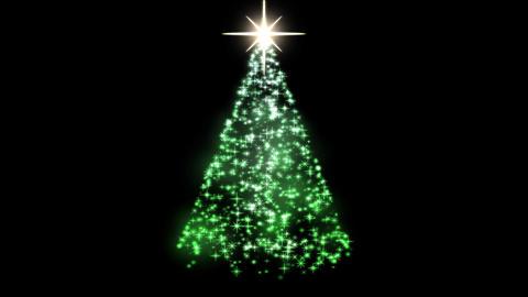 Rotating Christmas Tree Animation - Loop Green Animation