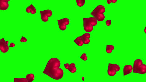 Pink hearts floating against green screen Animation