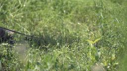 farm mowing scythe in hot summer day Footage
