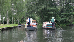 Boat trip through the channels of Spreewald Live Action