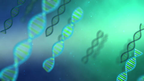 dna full hd Animation