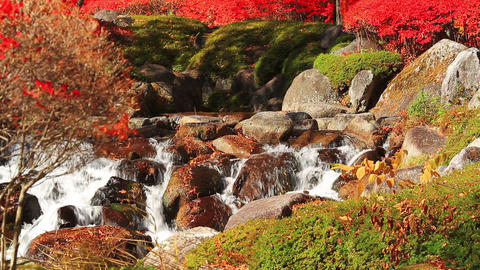 Autumn Waterfall On The Mountain River stock footage