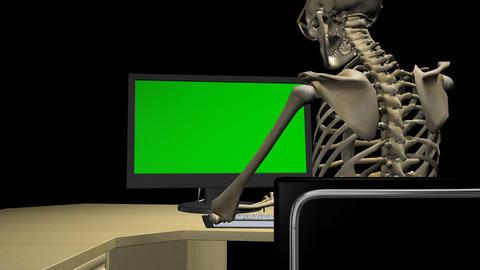 Skeleton At Computer - Close Back - Loop - Alpha Animation