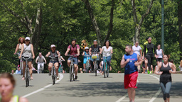 People Riding Bicycle And Jogging In Central Park stock footage