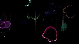 Colored Film Noise - 02 - Loop stock footage