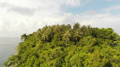 Tropical Island. Aerial Shot. 1
