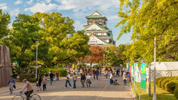 4k timelapse video of people visiting Osaka Castle Footage