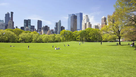 Central Park, Time Lapse Stock Video Footage