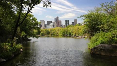 New York Skyline Footage