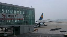 Lufthansa Flight Waiting at Beijing Airport 01 Stock Video Footage