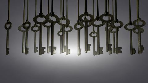Hanging Keys Animation. Matte stock footage