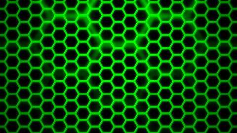green hexagonal cage Animation