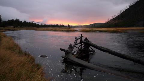 Madison River Sunrise stock footage