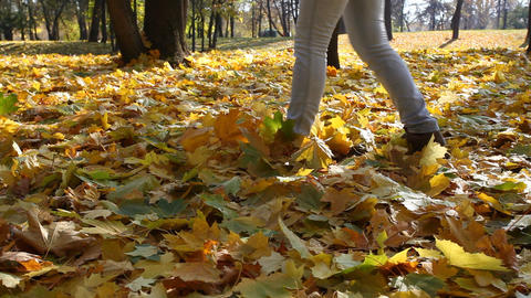Person In Jeans Goes On The Autumn Fallen-down Map stock footage