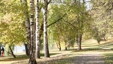 Two people go on beautiful autumn park Footage