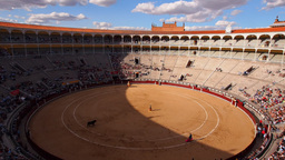 Bullfighting on Las Ventas Bullring in Madrid, Spa Footage