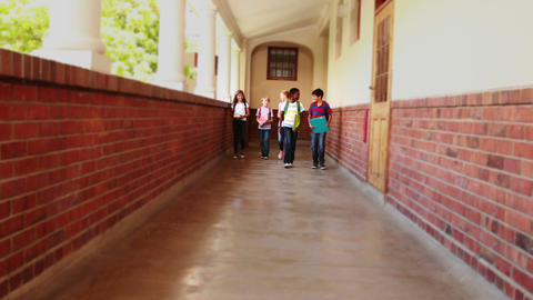 Cute pupils walking down the hall Footage