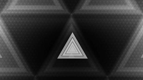 white trigonal spot Animation