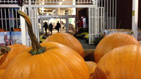 Pumpkins for sale Footage