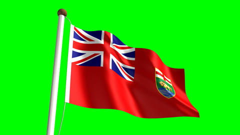 Canadian State Flags 0