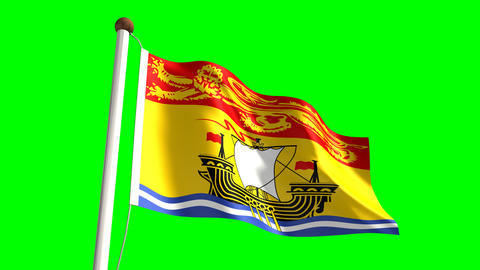 New Brunswick Flag stock footage