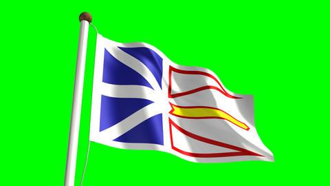 Newfoundland flag Animation