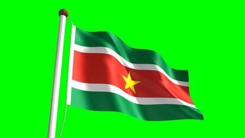 Surinamese flag Animation