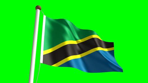 Tanzanian flag Animation