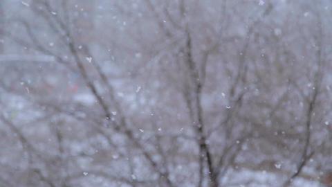 Heavy snow falls Footage
