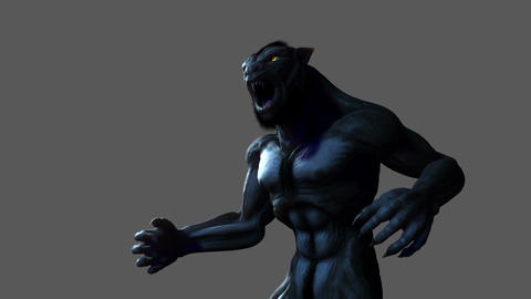 Werewolf Transformation (with alpha matte) Animation