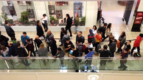 People Line Up For Waiting Celebrity Photograph In stock footage