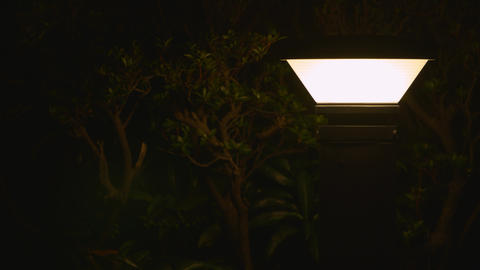 2160p (12bit RGB4:4:4) Garden light 庭園灯 Footage