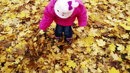 4 K Cute Small Girl Playing with Leaves in Autumn Footage