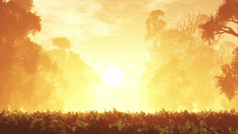 4K Mysterious Magic Forest Sunset Sunrise 3D Anima Animation