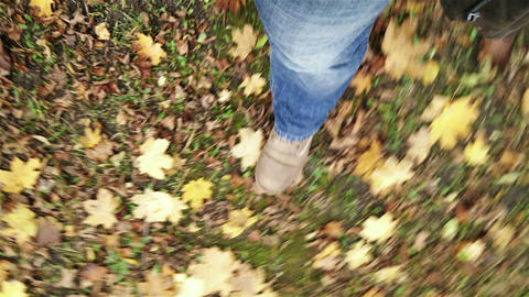 4 K Walking In Autumn Forest Perspective High Angl stock footage