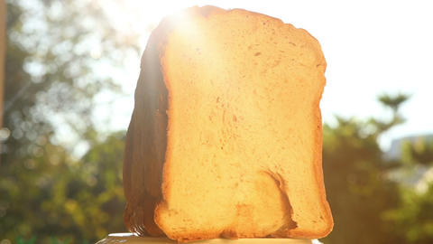 Half White Bread stock footage
