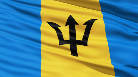 Fluttering Flag Of Barbados Stock Video Footage