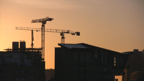 Cranes in the morning Stock Video Footage