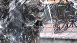 Fountain Lion In The Kiev stock footage
