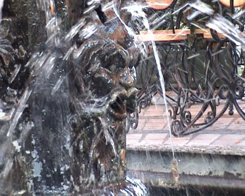 fountain lion in the Kiev Stock Video Footage