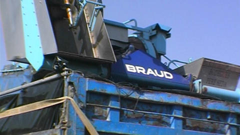 Grape harvesting Stock Video Footage