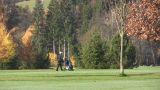 Golf stock footage