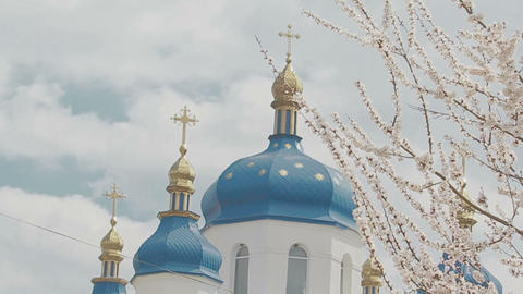 Church Dome In Cherry Blossom stock footage